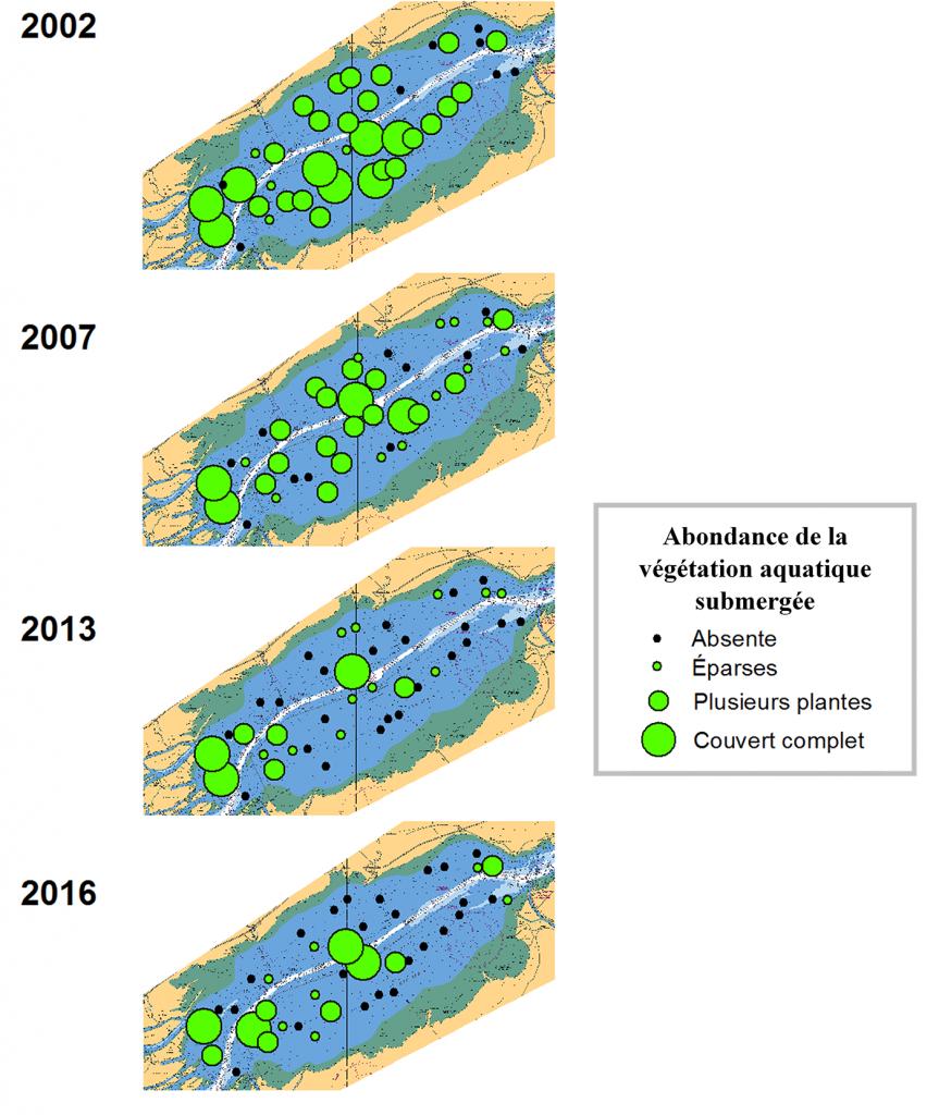 Figure 1 - Abondance et distribution de la végétation aquatique submergée au lac Saint-Pierre, de 2002 à 2016 (tiré de Magnan et coll. 2017).