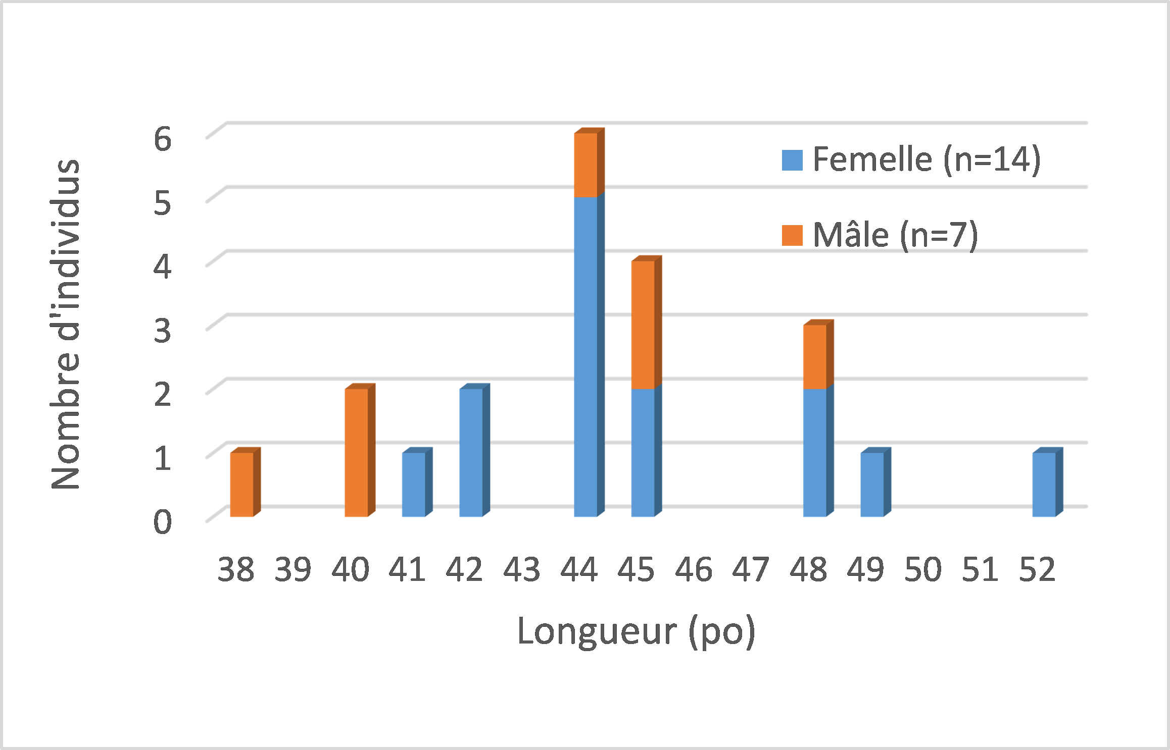 Figure 5 - Length frequency distribution of marked Muskellunge in Lake Saint-Pierre.