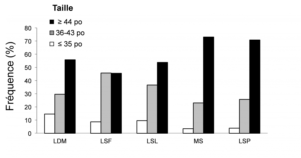 Figure 3 - Size structure of Muskellunge caught by sport fishing during the 2010- 2013 period in the St. Lawrence River watersheds (LDM: Lake des DeuxMontagnes, LSF: Lake Saint-François, LSL: Lake Saint-Louis, MS: stretch between Montréal and Sorel, LSP: Lake Saint-Pierre). The proportion of fish greater than or equal to 44 inches, 36 to 43 inches and 35 inches or less is shown.